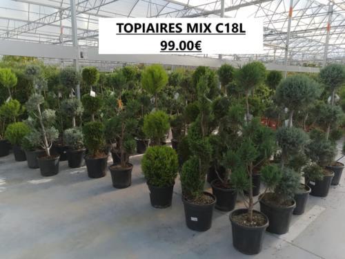 2- TOPIAIRES MIX C18L 99.00