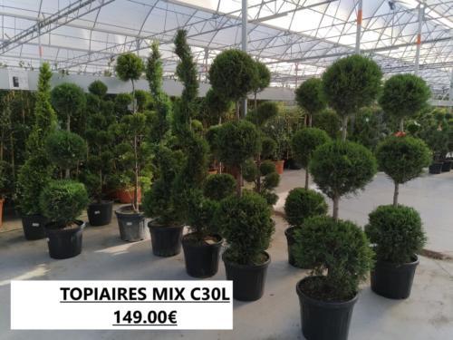 4- TOPIAIRES MIX C30L 149.00